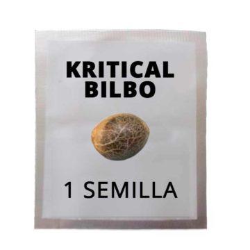 Semilla Marihuana Gratis Kritical Bilbo