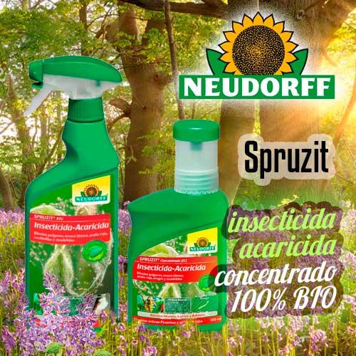 Boletin Noticias Mayo 2020 Insecticida