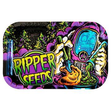 Bandeja Chempie Ripper Seeds 01