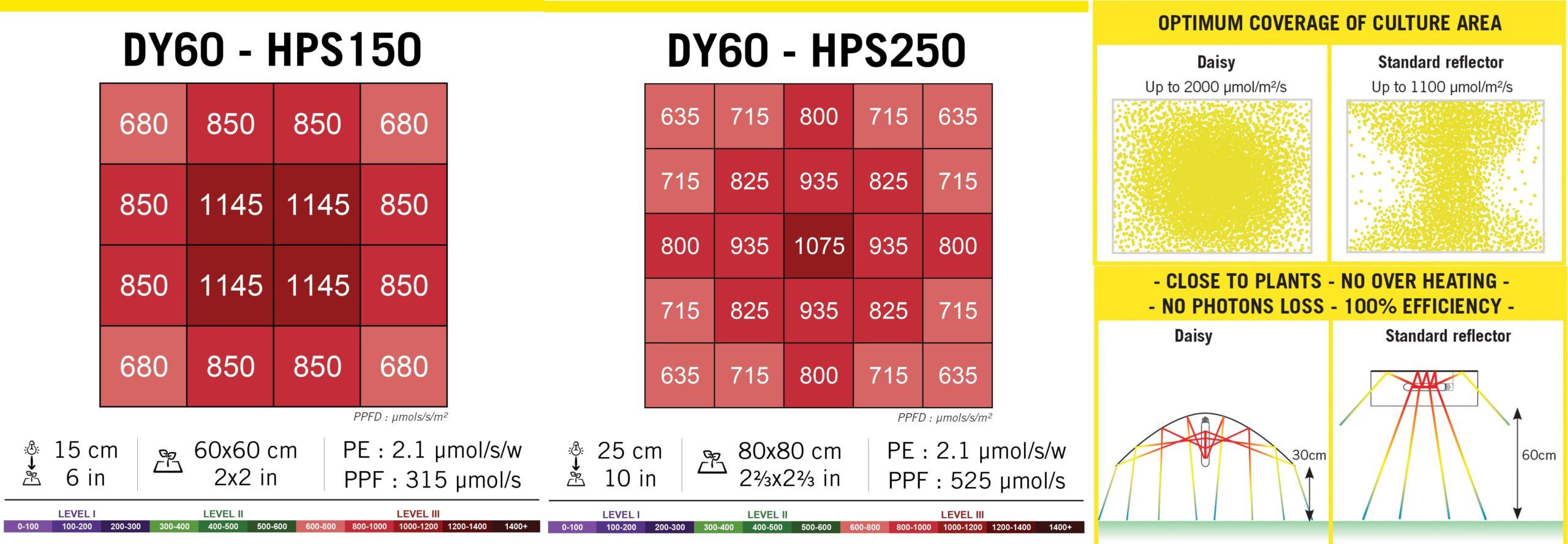 Dy60 Reflector Daisy 100Cm Secret Jardin 09 Scaled