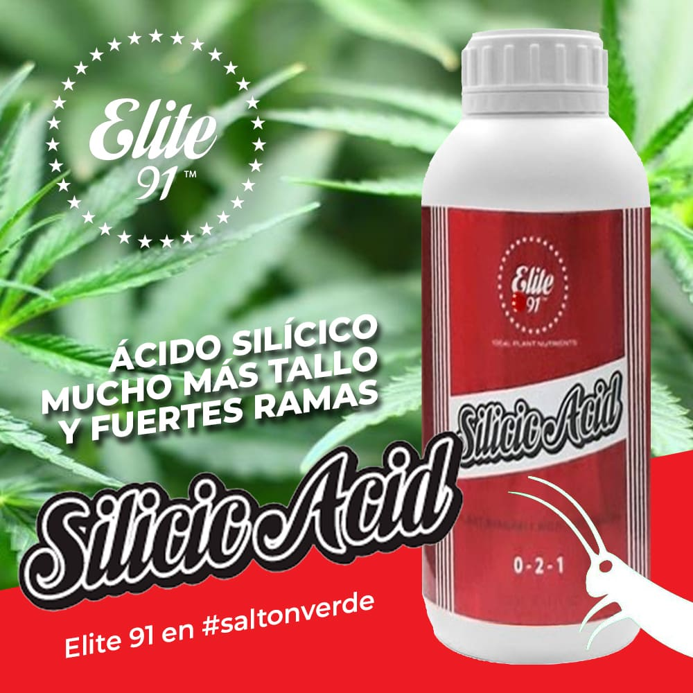 Instagram Elite91 Producto Silicic Acid