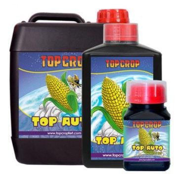 Top Auto Top Crop